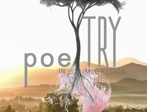 Poetry Competition, 2017 Finalists