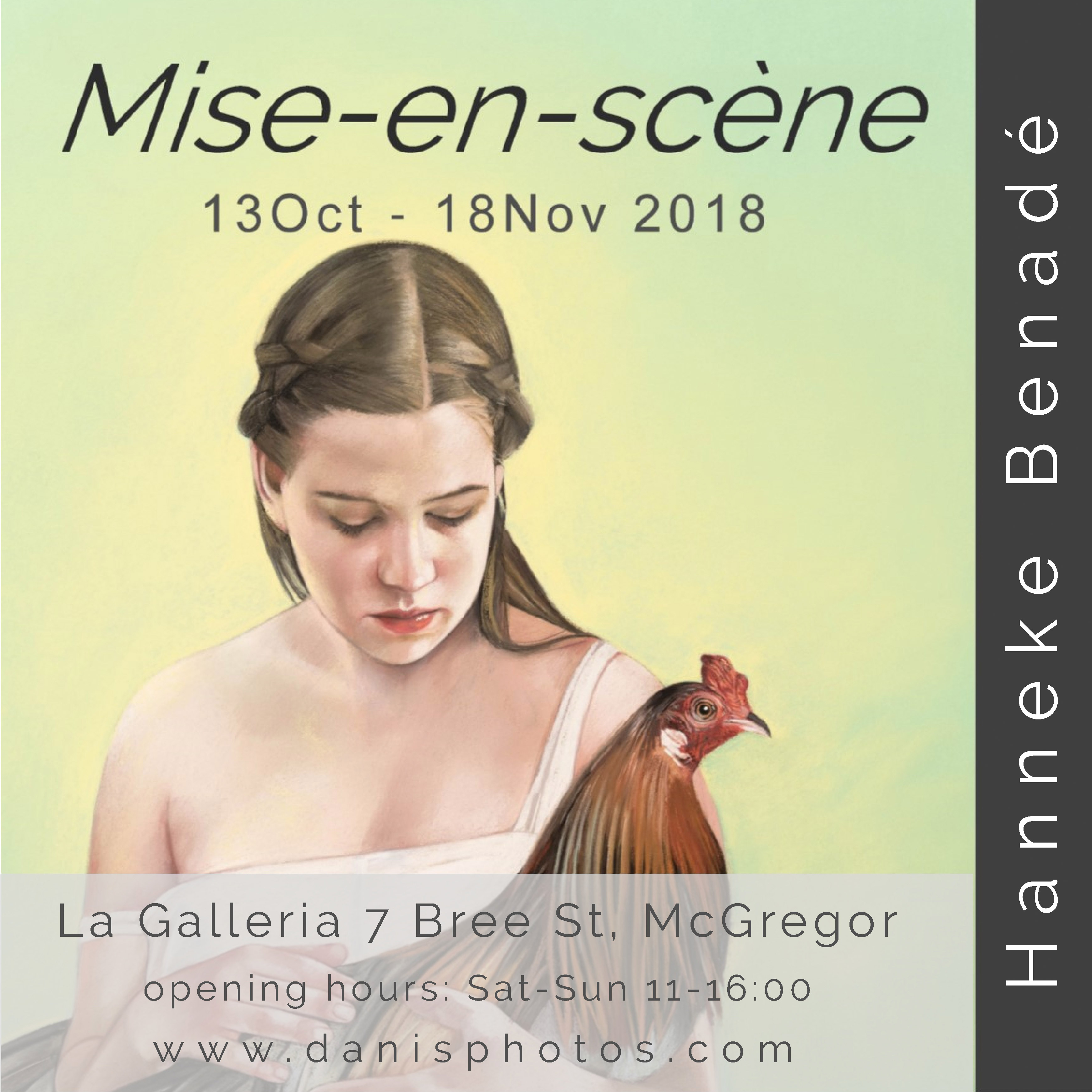Hanneke Benade' solo exhibition